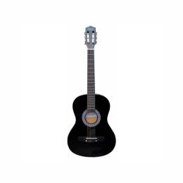 Гитара TERRIS TC 3801A NA