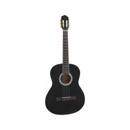 Гитара TERRIS TC 390A BK